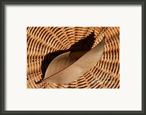 Basket Of Brown Framed Print By Dan Holm