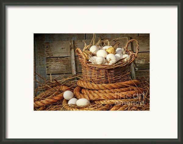 Basket Of Eggs On Straw Framed Print By Sandra Cunningham