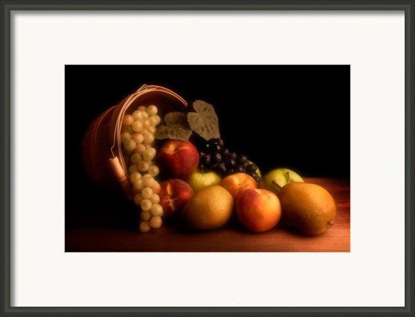 Basket Of Fruit Framed Print By Tom Mc Nemar