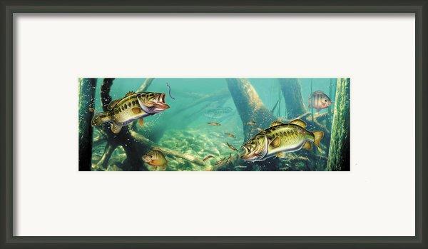 Bass Lake Framed Print By Jq Licensing