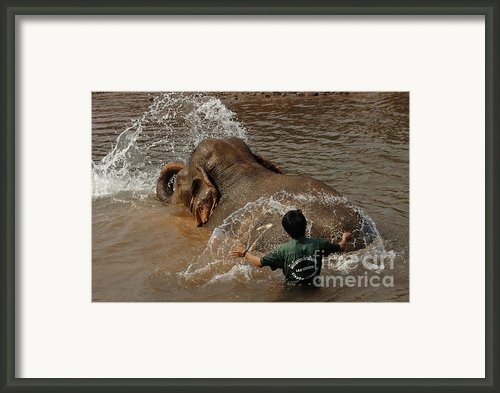 Bath Time In Laos Framed Print By Bob Christopher