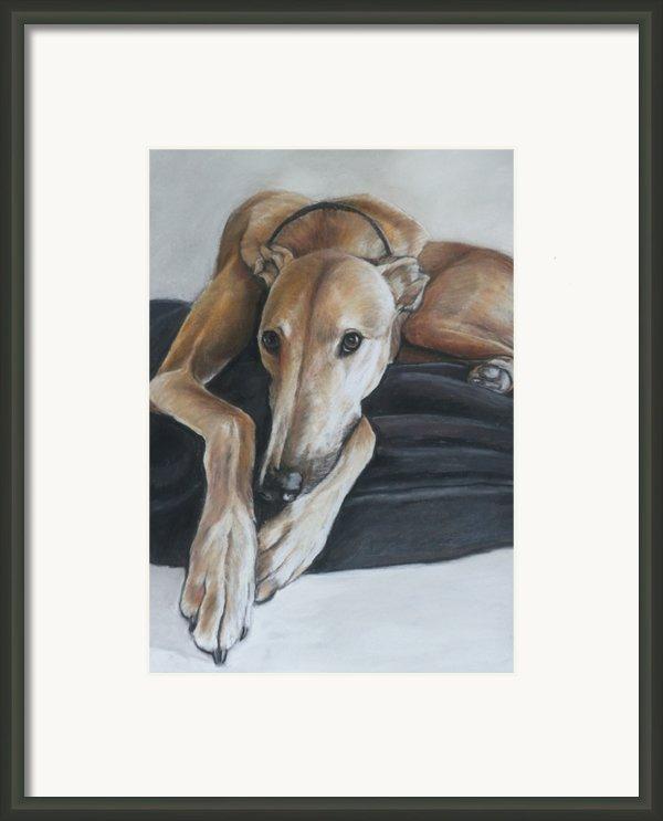 Bauregard Framed Print By Charlotte Yealey