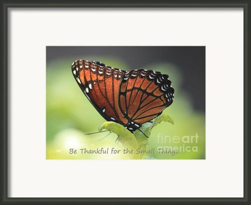 Be Thankful Framed Print By Carol Groenen