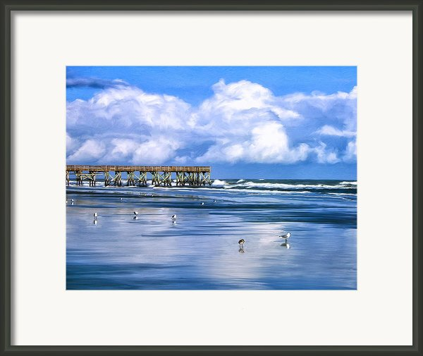 Beach At Isle Of Palms Framed Print By Dominic Piperata