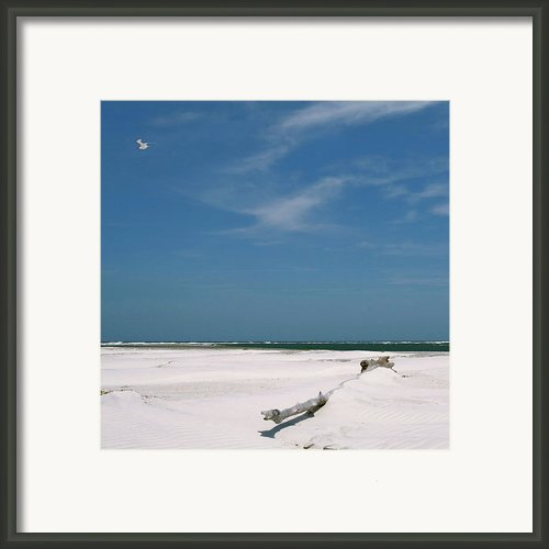 Beach At Talbot Island Framed Print By Glennis Siverson