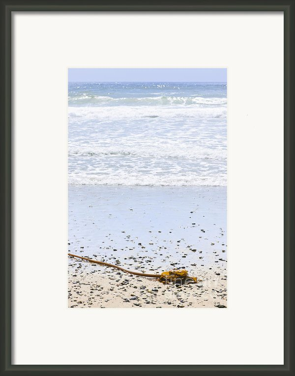 Beach Detail On Pacific Ocean Coast Framed Print By Elena Elisseeva