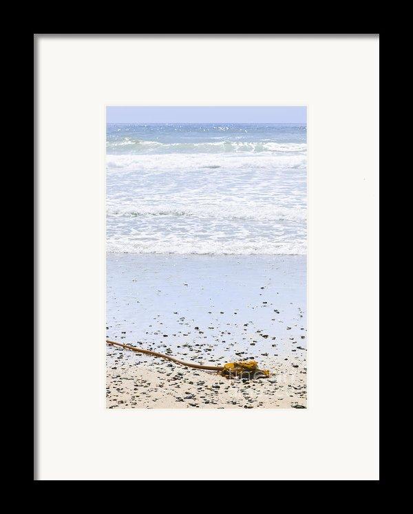 Beach Detail On Pacific Ocean Coast Framed Print By Elena Elisseeva