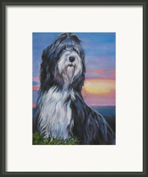 Bearded Collie Sunset Framed Print By L A Shepard