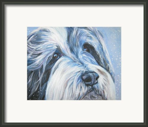 Bearded Collie Up Close In Snow Framed Print By L A Shepard