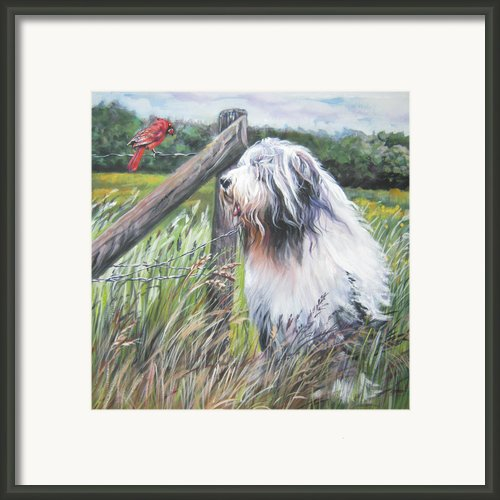 Bearded Collie With Cardinal Framed Print By L Ashepard
