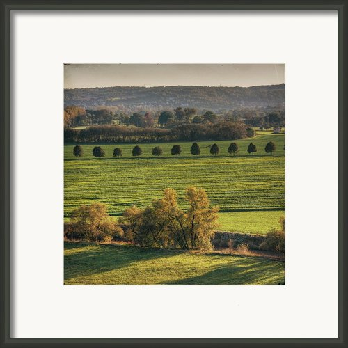 Beautiful Landscape With Trees And Field Framed Print By Fsn