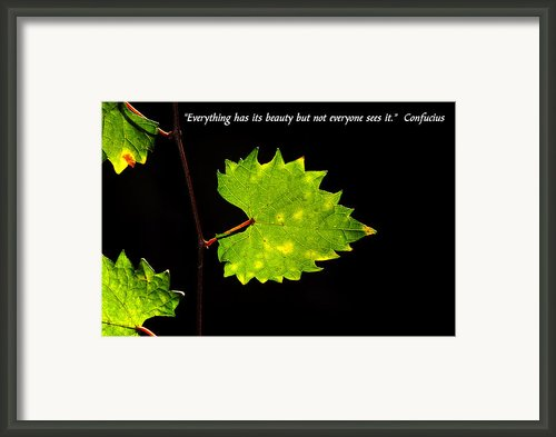 Beauty And Confucius Framed Print By David Lee Thompson