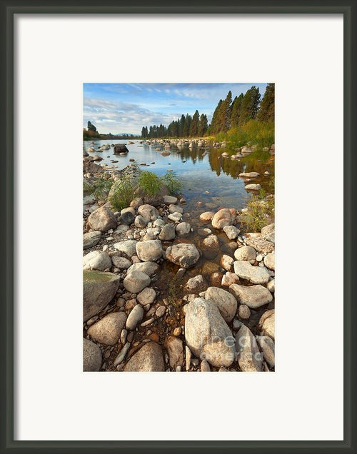 Beginnings Framed Print By Reflective Moments  Photography And Digital Art Images