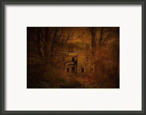 Behind The Vines Framed Print By Emily Stauring