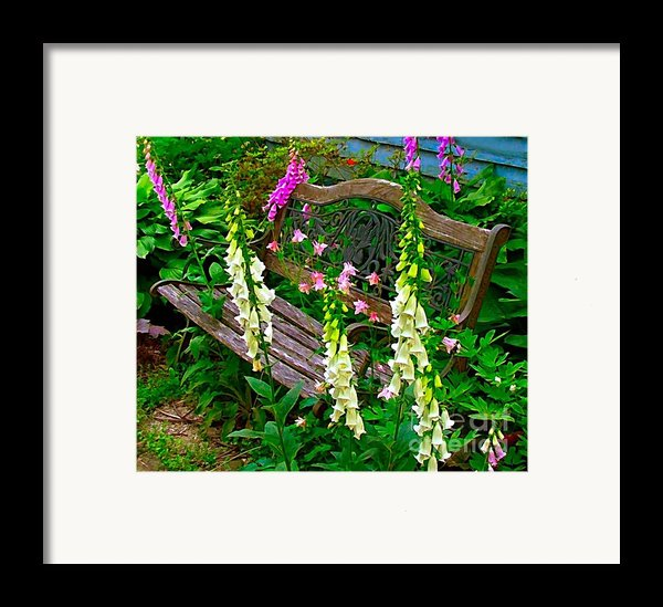 Bench Among The Foxgloves Framed Print By Julie Dant