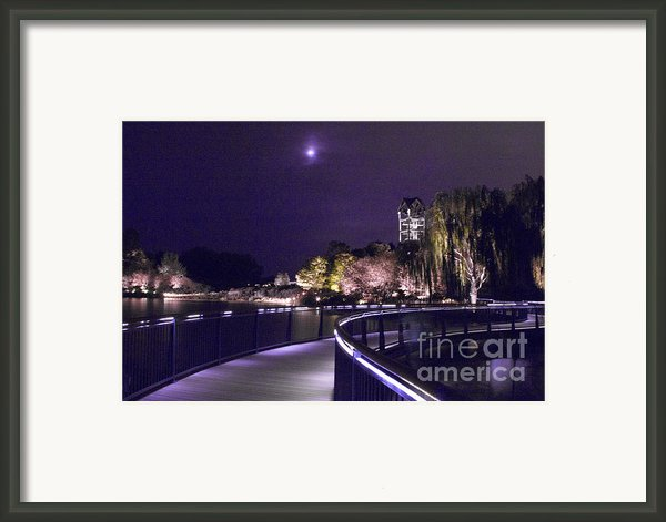 Beneath The Moon Framed Print By Elizabeth Chevalier