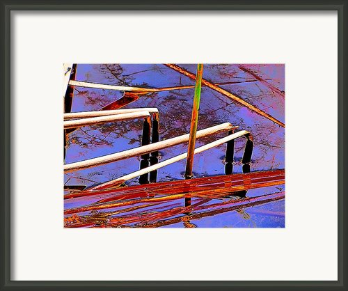 Bent Reed Abstraction Framed Print By Beth Akerman