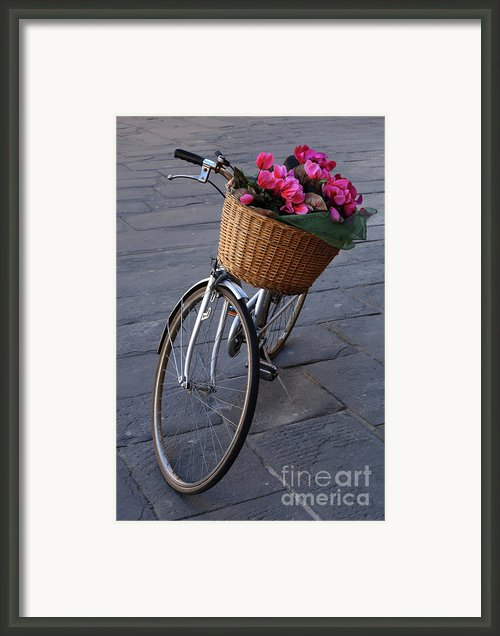 Bicycle In Lucca Italy Framed Print By Bob Christopher