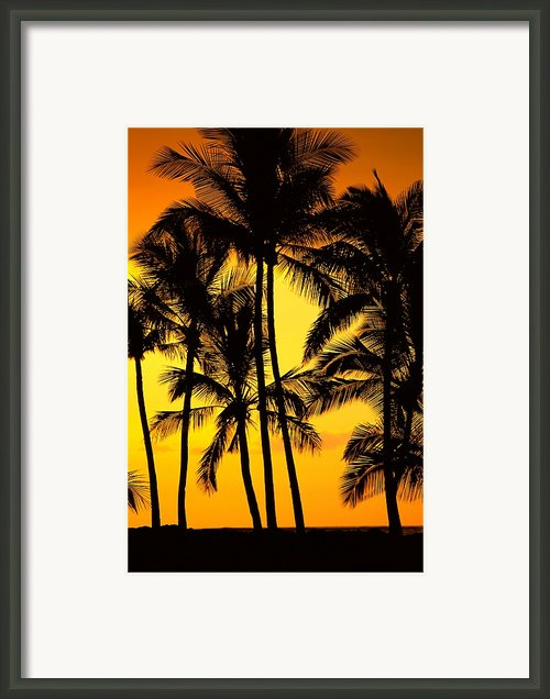 Big Island, View Framed Print By Greg Vaughn - Printscapes