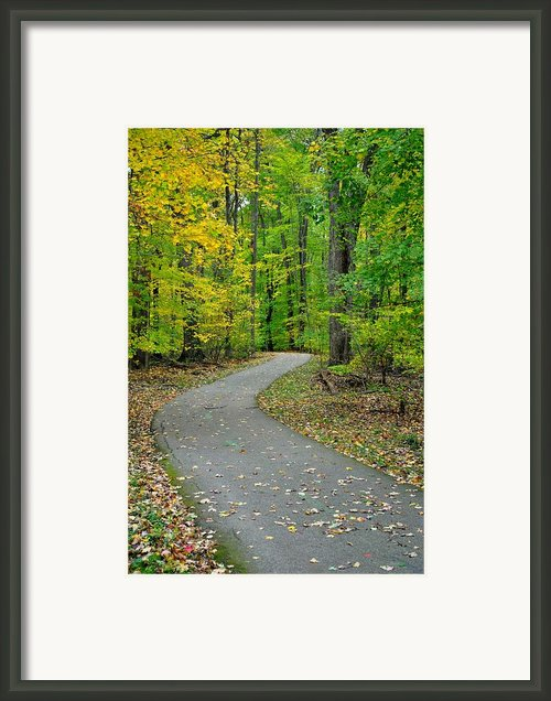 Bike Path Framed Print By Robert Harmon