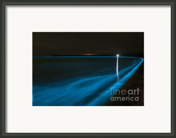 Bioluminescence In Waves Framed Print By Philip Hart