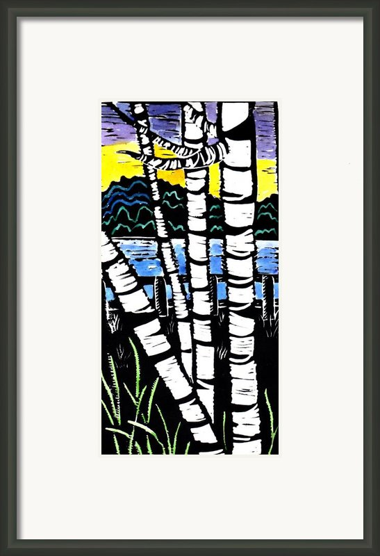 Birch Lake Framed Print By Jane Croteau