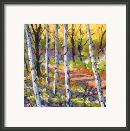 Birches 02 Framed Print By Richard T Pranke