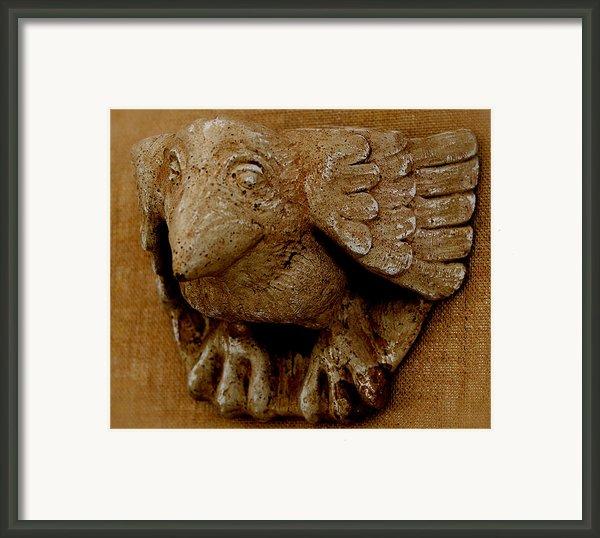 Bird Framed Print By Katia Weyher