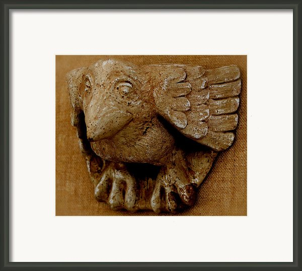 Bird Framed Print By Katia Weyher