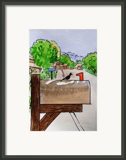 Bird On The Mailbox Sketchbook Project Down My Street Framed Print By Irina Sztukowski