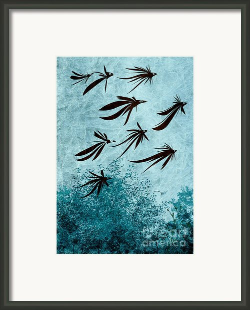 Birdeeze -v03 Framed Print By Variance Collections