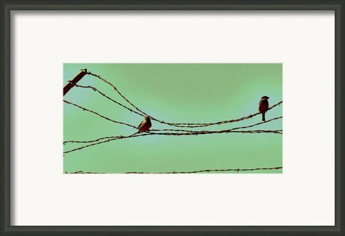 Birds On A Wire Framed Print By Amy Neal