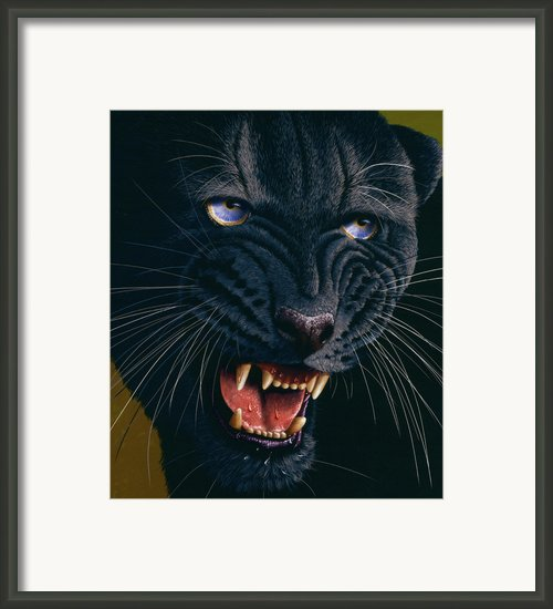 Black Panther 2 Framed Print By Jurek Zamoyski