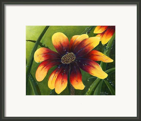 Blanket Flower Framed Print By Trister Hosang