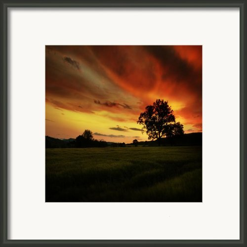 Blazing Skies Framed Print By Angel  Tarantella