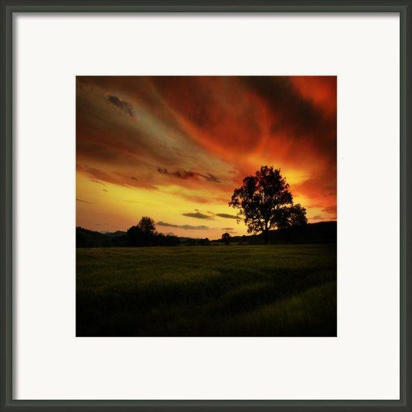 Blazing Skies Framed Print By Angel  Tarantella