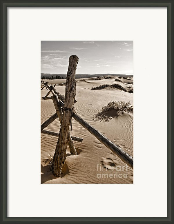 Bleak Framed Print By Heather Applegate