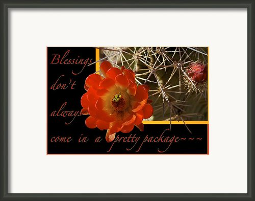 Blessings Framed Print By Phyllis Denton