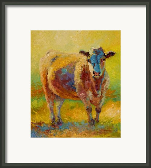 Blondie - Cow Framed Print By Marion Rose