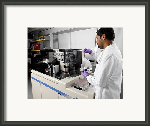 Blood Typing Framed Print By Tek Image