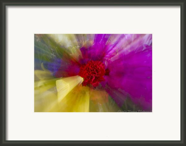 Bloom Zoom2 Framed Print By Charles Warren