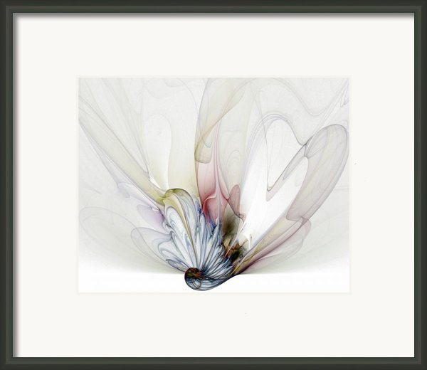 Blow Away Framed Print By Amanda Moore