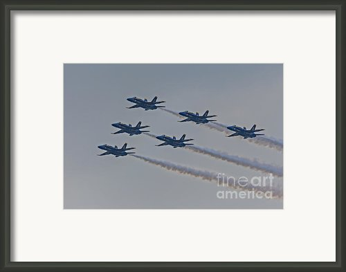 Blue Angels Framed Print By Susan Candelario