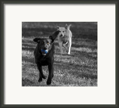 Blue Ball Framed Print By Jean Noren
