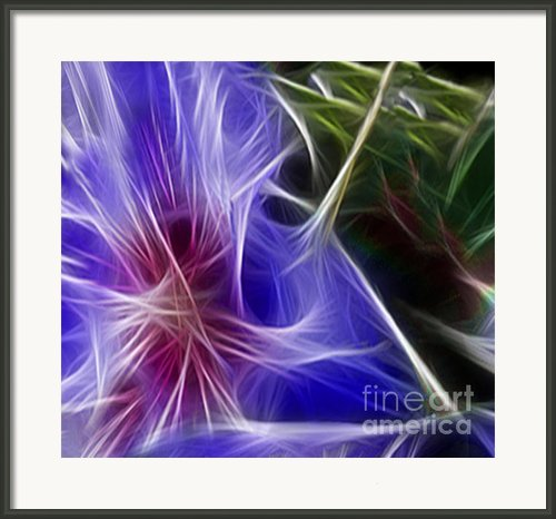 Blue Hibiscus Fractal Panel 1 Framed Print By Peter Piatt