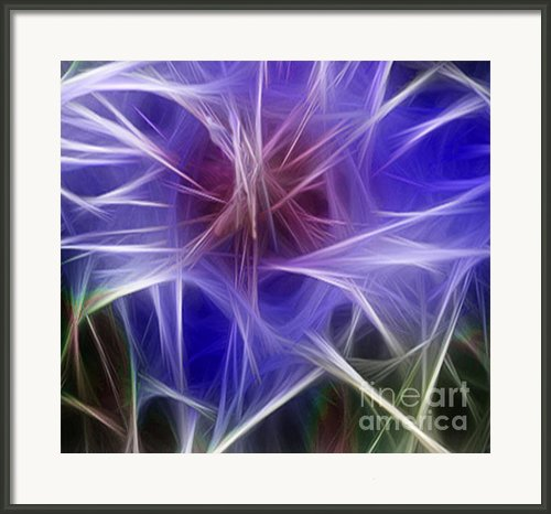 Blue Hibiscus Fractal Panel 2 Framed Print By Peter Piatt