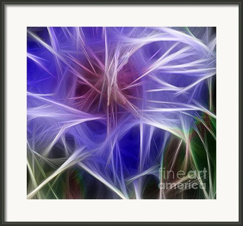 Blue Hibiscus Fractal Panel 5 Framed Print By Peter Piatt