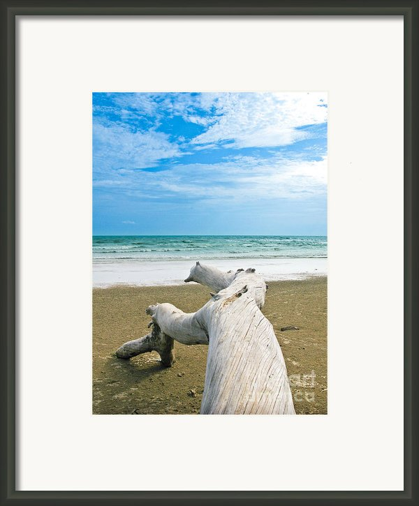 Blue Sea And Sky With Log On The Beach Framed Print By Nawarat Namphon