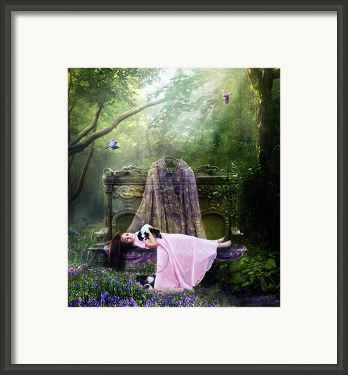 Bluebell Dreams Framed Print By Karen Koski