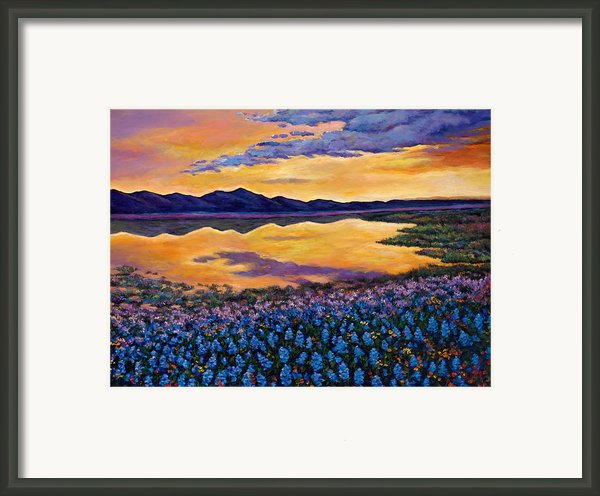 Bluebonnet Rhapsody Framed Print By Johnathan Harris